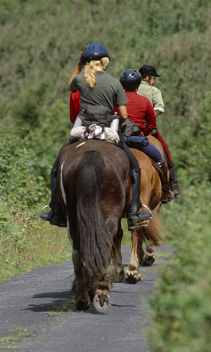 mayo-ireland-horse-riding