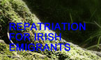 The Safe-Home Programme, Repatriation for Irish Emigrants
